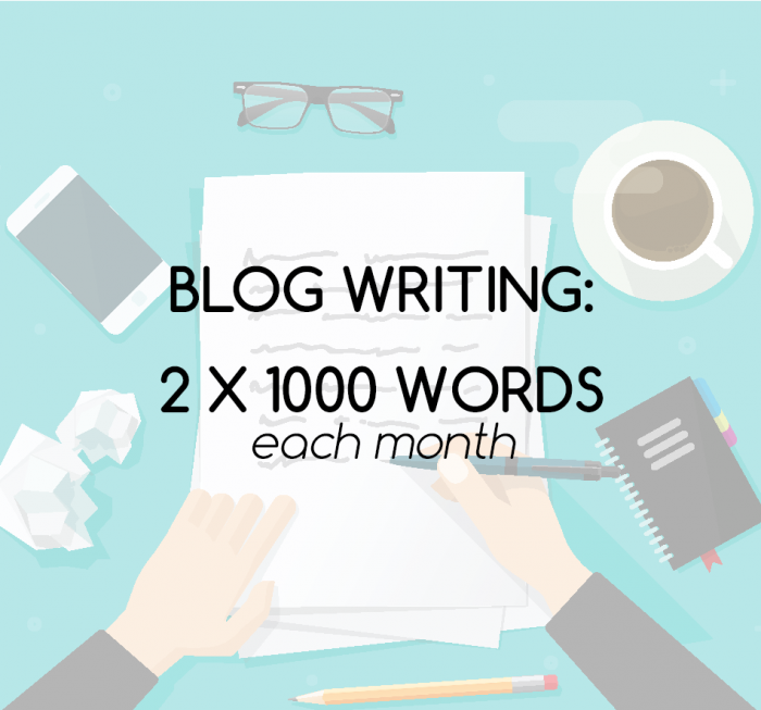 1000 word blog writing service